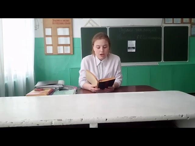 Изображение предпросмотра прочтения – ЕленаСвотина читает произведение «Шарик» А.И.Солженицына