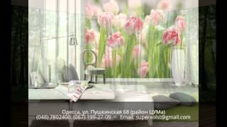Фотообои на заказ в Одессе - (067) 199-27-09 - ул. Пушкинская 68(, 2015-10-22T21:16:36.000Z)