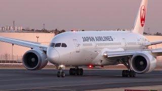 [4K] [成田空港・夕暮れ] JAL Boeing 787-8 [JA826J] landing at Tokyo Narita Airport (日本航空)