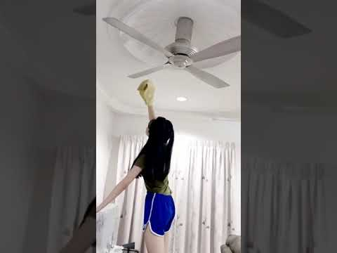 Cento Ceiling Fan Duster