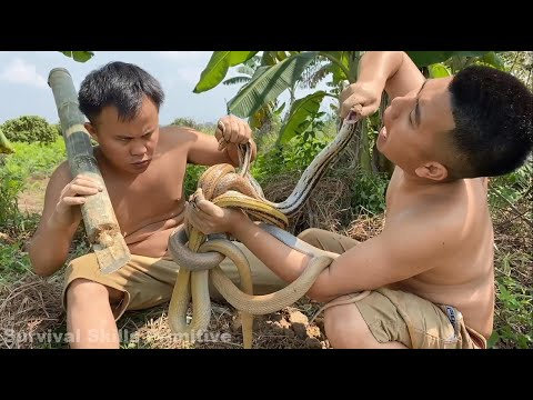 Primitive Technology With Survival Skills Looking For Food \u0026 Catching And Cooking Snakes