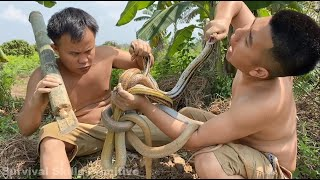 Primitive Technology with Survival Skills looking for food & catching and cooking snakes