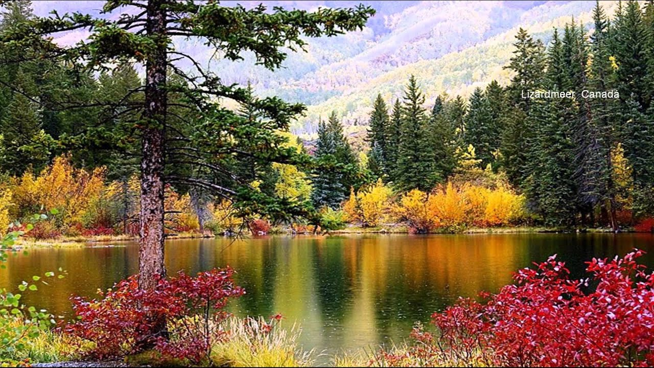 beautiful scenery hd1080p