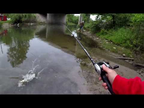 Fishing For Pike In  Tiny Creek- London, Ontario