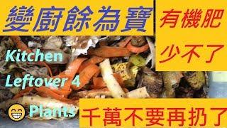 廚餘變肥料 -- 菜園果樹好 -- 厨余都是宝 -- 不要再扔掉/ TURN KITCHEN WASTES TO TREASURES OF PLANT COMPOSTS