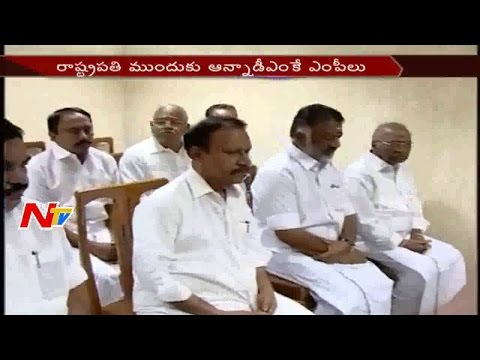 Celebrities Support Jallikattu || Panneerselvam to meet PM Modi || NTV
