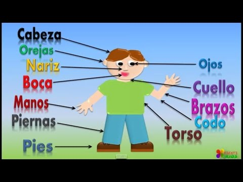 las-partes-del-cuerpo-para-niños,-our-body-parts-in-spanish-for-children-(video-infantil)