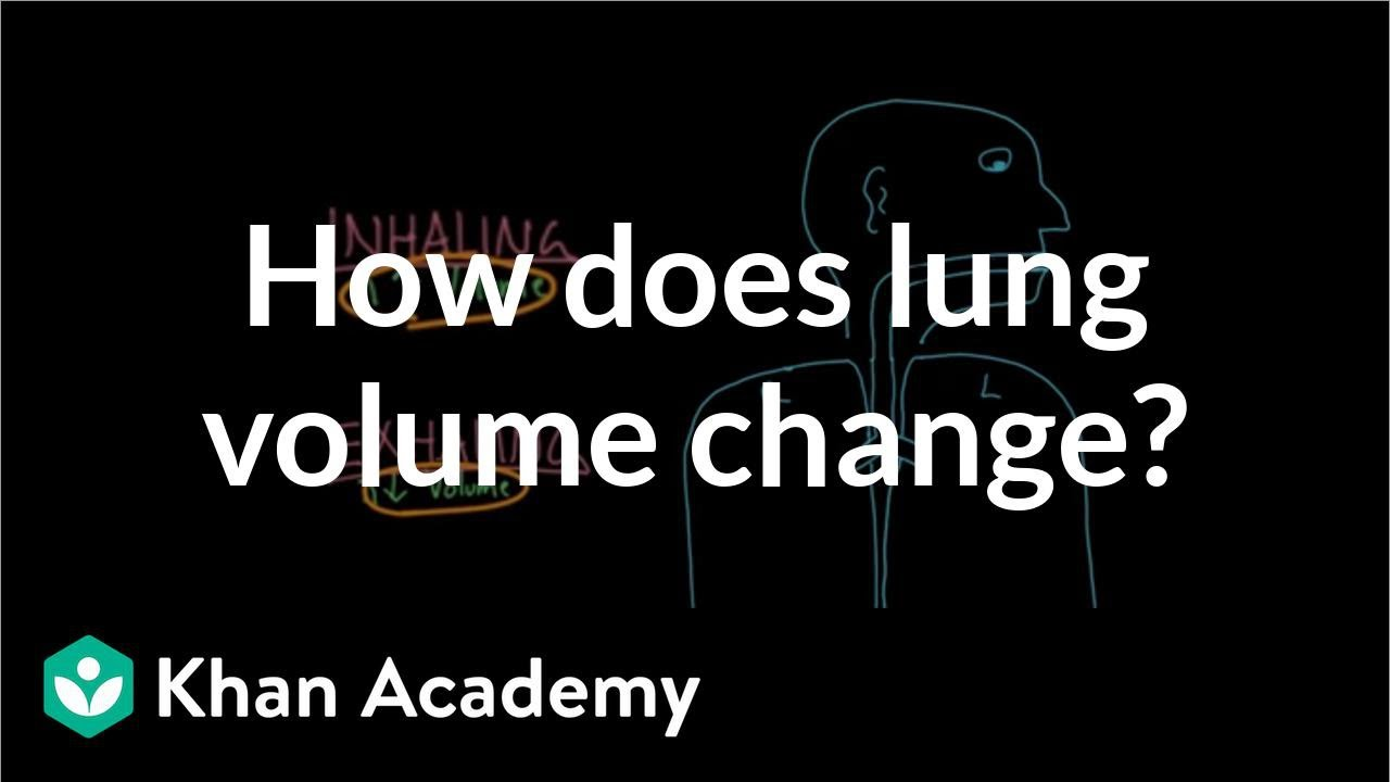 How does lung volume change? (video) | Khan Academy