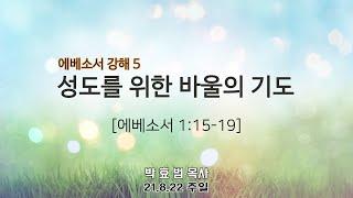 2021년 8월 22일 4부 주일예배(청년부예배) 설교 박효범 목사