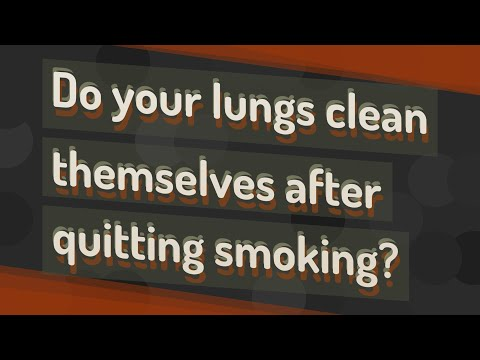 ☛ Do your lungs clean themselves after quitting smoking?