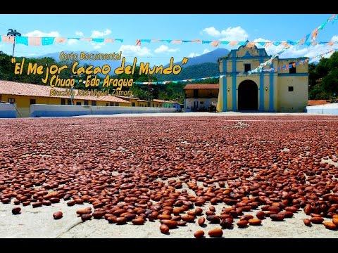 El Mejor Cacao del Mundo