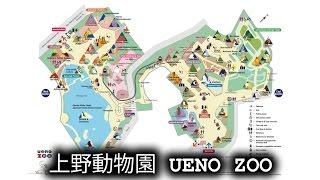 上野動物園 Ueno Zoo, Tokyo [360°VR]
