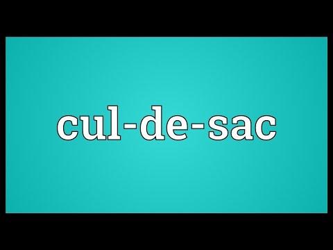 Cul-de-sac Meaning