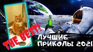 Лучшие приколы 2021 Смешные видео Подборка приколов 5 Приколы с животными и людьми на Funny Video