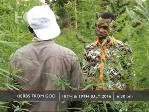 Herbs From God - Hotline Documentary Promo