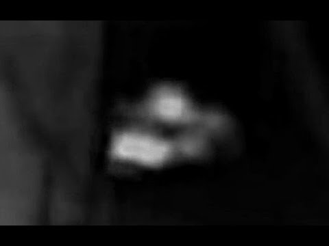 The Swaying of the Grays Harbor Bigfoot (Thermal footage)