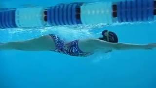 【練習中Goodスイム】徹底的平泳ぎ(Br) ご自身の泳ぎをチェック!20180324 一礼会 thumbnail