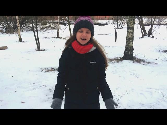 Изображение предпросмотра прочтения – АнастасияРябикова читает произведение «Снег да снег» А.А.Блока