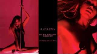 2 Live Crew - Be my private dancer (Chrome Sparks Remix)