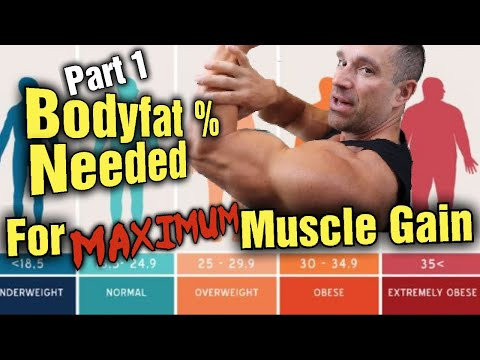 How Much Body Fat and Calories are Needed for Maximum Muscle Growth? (Part 1 Growth)
