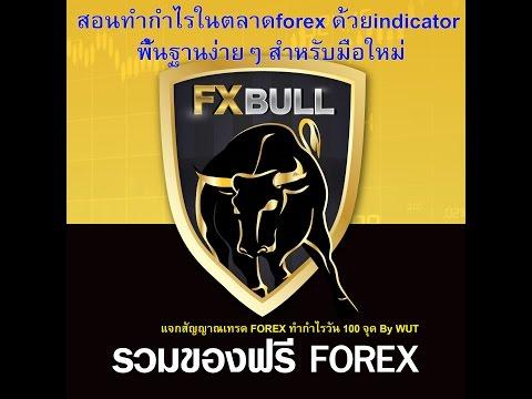 สอนทำกำไรในตลาดforex ด้วยindicator พื้นฐานง่ายๆ สำหรับมือใหม่ by FXBull