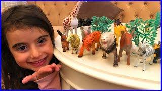 Rüya İle Oyuncak Hayvanlar ile Rüya