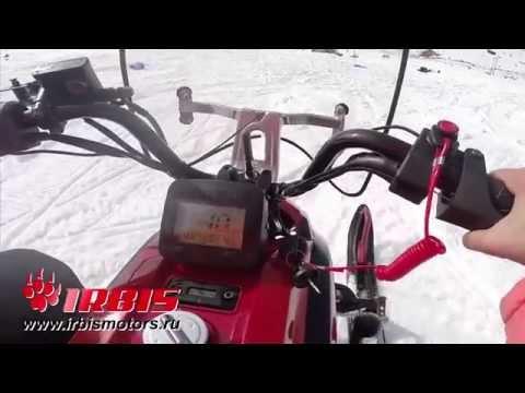 Обзор снегохода dingo T150 в Казахстане