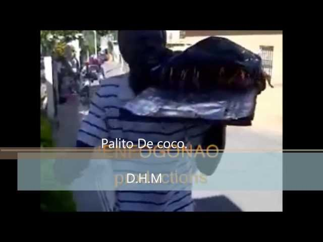 mambo del palito de coco D.H.M Travel Video