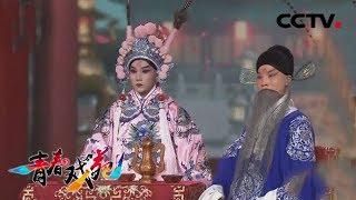 《青春戏苑》 20190514 戏韵芬芳  CCTV戏曲
