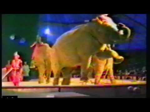 Circus KRONE, 1989  TV docu 2  Dutch