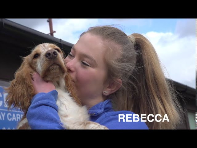 Making A Difference Awards 2020 Rebecca and Bruce's Doggy Day Care