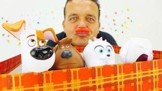 Videos para niños. Juguetes de la Vida Secreta de tus Mascotas