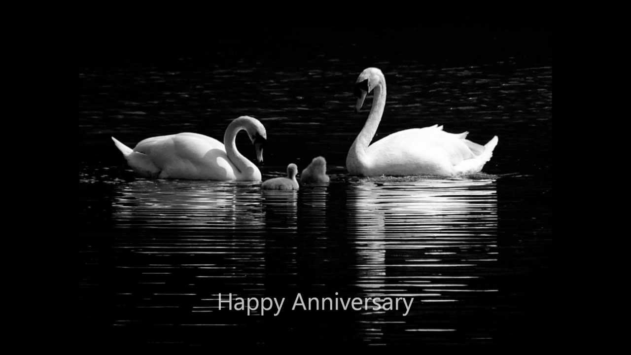 Happy anniversary song and photos with beautiful pics youtube