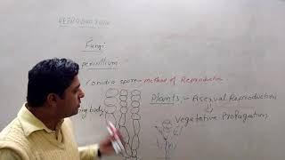12TH BIOLOGY REPRODUCTION IN ORGANISMS IN HINDI 1.10