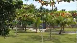 SOLD!!!! House in Carcar Cebu in 1.3 hectare land For Sale at PHP 9M only!