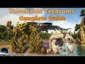 Complete guide to all Unlockable Tekgrams In Ark Survival Evolved, Xbox one, PS4, PC. Ninjakiller
