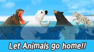 [EN] Let animals go home!! infant English education, learn animals name, collecta #101ㅣCoCosToy