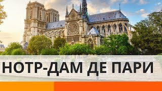 Что нужно знать о соборе Нотр-Дам де Пари – Утро в Большом Городе