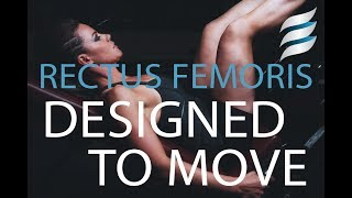 Designed to Move | Rectus Femoris & Core