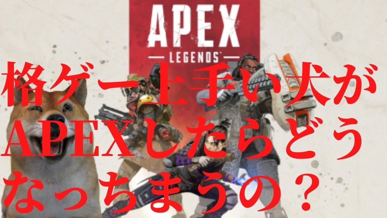 【 APEX 】格ゲー上手い犬はFPSやってもうまいんやな #5
