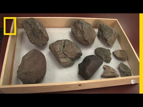 Oldest Known Stone Tools Discovered: 3.3 Million Years Old   National Geographic