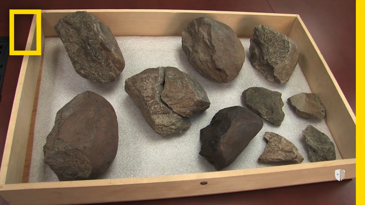 Three methods used for hookup artifacts and fossils