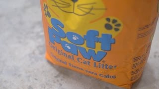 Hacks: Cleaning Nasty Spills with Kitty Litter