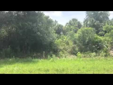 0.23 Acres in Charlotte County, Florida - Property Video