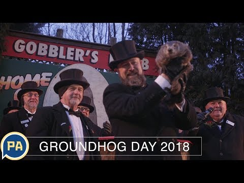 Groundhog Day 2018: Watch as Phil sees his shadow and ruins the next few weeks for all of us