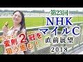 【競馬】NHKマイルカップ 2018 直前展望(トライアルが変わると流れも変わる!) ヨ…