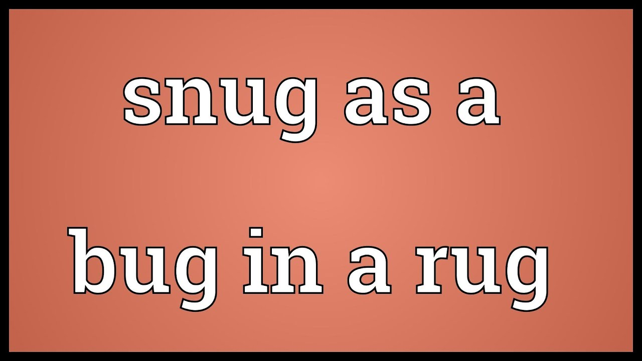 Snug As A Bug In Rug Meaning