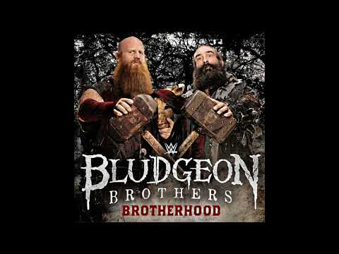 WWE: (The Bludgeon Brothers) -