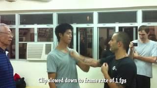 Wing Chun's Speed using the Nim Tao state - Nima King, Chu Shong Tin