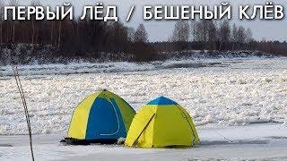ПЕРВЫЙ ЛЕД / БЕШЕНЫЙ КЛЕВ / СЕЗОН 2019 - 2020